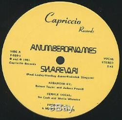 A NUMBER OF NAMES Sharevari / Instrumental 12 Sealed (Early Detroit Techno)